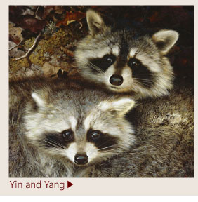 Yin and Yang by Carl Brenders