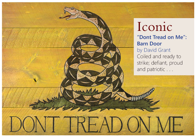 """Don't Tread on Me"", Barn Door by David Grant"