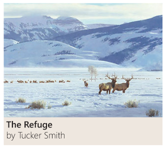 The Refuge by Tucker Smith