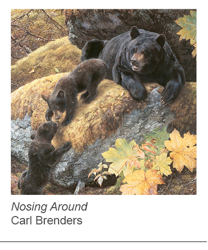 """Nosing Around"" by Carl Brenders"