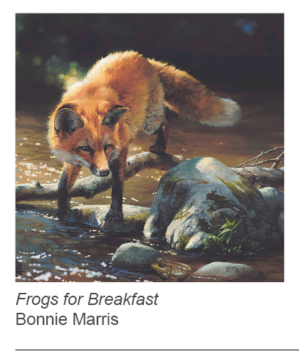 """Frogs for Breakfast"" by Bonnie Marris"