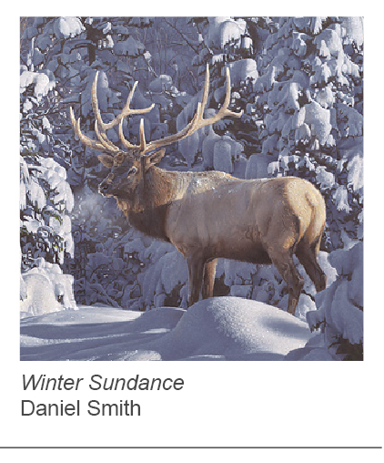 """Winter Sundance"" by Daniel Smith"