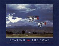 SCARING THE COWS&lt;br&gt; POSTER