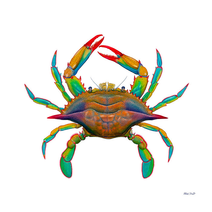 Flick Ford - Maryland Blue Crab -  MASTERWORK CANVAS EDITION Published by the Greenwich Workshop