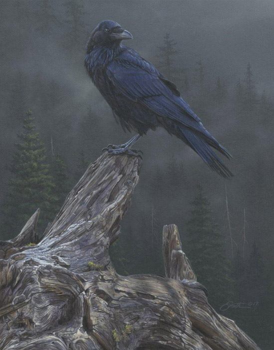 Daniel Smith - Raven´s Roost -  LIMITED EDITION CANVAS Published by the Greenwich Workshop