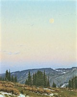 Twilight Moon&lt;br&gt; LIMITED EDITION CANVAS