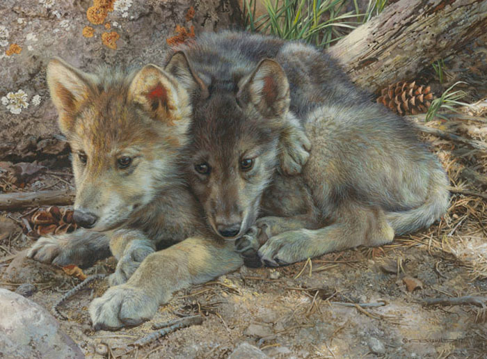 Carl Brenders - Brotherly Love-Wolf Pups -  LIMITED EDITION PRINT Published by the Greenwich Workshop