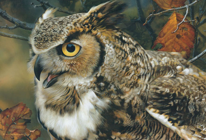 Carl Brenders - In Focus - Great Horned Owl -  LIMITED EDITION CANVAS Published by the Greenwich Workshop