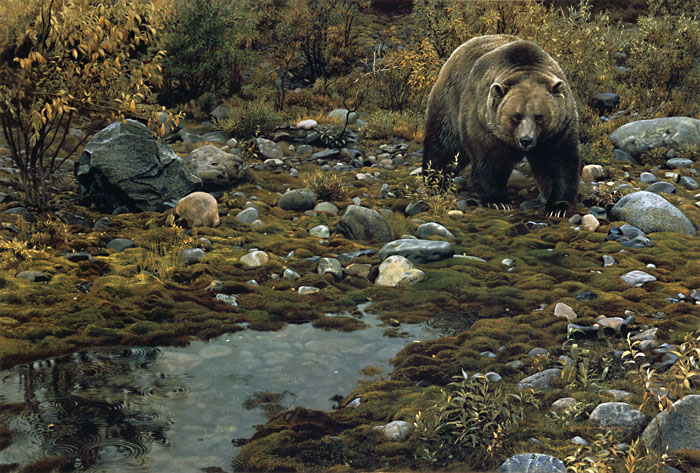 Carl Brenders - Trailblazer - Grizzly Bear -  LIMITED EDITION PRINT Published by the Greenwich Workshop