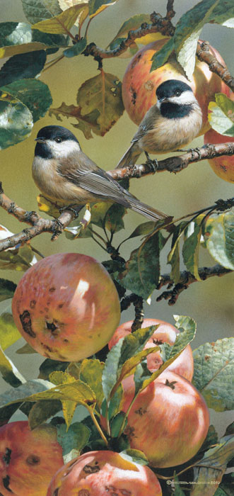 Carl Brenders - Chickadees & Apple Tree -  LIMITED EDITION PRINT Published by the Greenwich Workshop