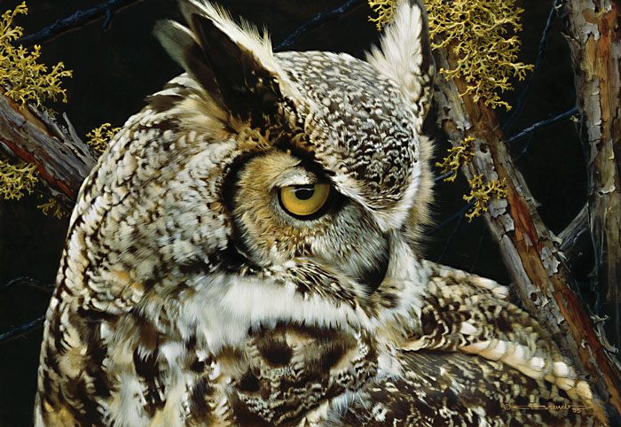 Carl Brenders - Eye of the Beholder-Great Horned Owl -  LIMITED EDITION PRINT Published by the Greenwich Workshop