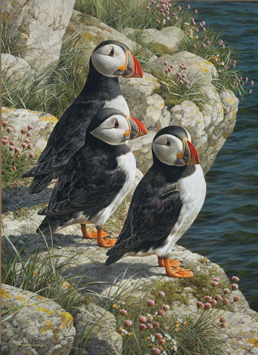 Carl Brenders - Fisherman´s Wharf - Puffins -  LIMITED EDITION CANVAS Published by the Greenwich Workshop