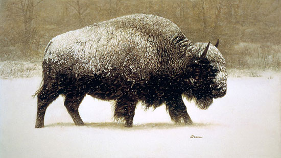 James Bama - Buffalo in Storm -  LIMITED EDITION CANVAS Published by the Greenwich Workshop