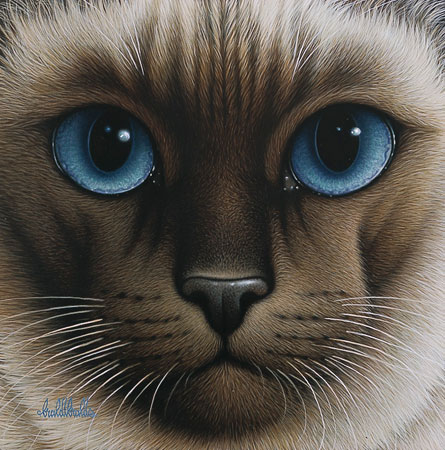 Braldt Bralds - CHOCOLATE POINT SIAMESE -  LIMITED EDITION PRINT Published by the Greenwich Workshop