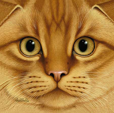 Braldt Bralds - SCOTTISH FOLD - ORANGE TABBY -  LIMITED EDITION PRINT Published by the Greenwich Workshop