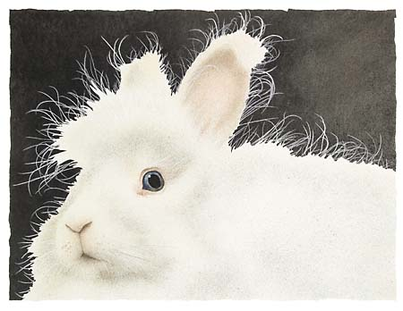 Will Bullas - MR. HARRY BUNS... -  LIMITED EDITION PRINT Published by the Greenwich Workshop