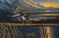 WIDGEON - OUT FRONT&lt;br&gt; LIMITED EDITION PRINT