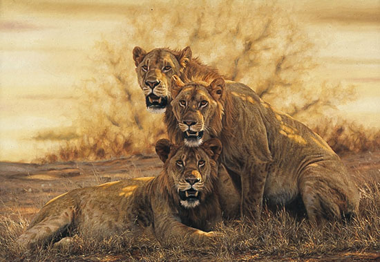 Simon Combes - HOT LIONS -  LIMITED EDITION CANVAS Published by the Greenwich Workshop