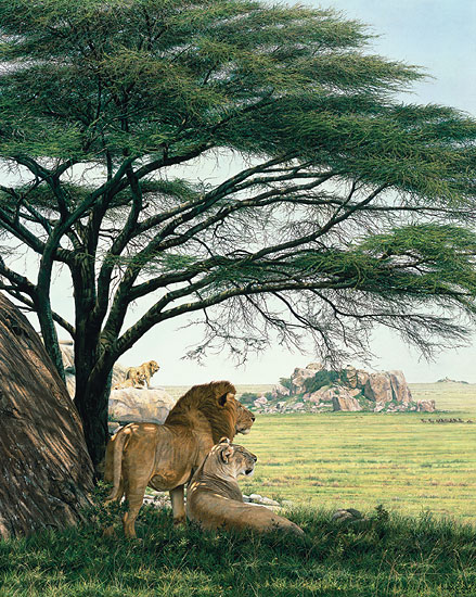 Simon Combes - An African Experience -  MASTERWORK CANVAS EDITION Published by the Greenwich Workshop