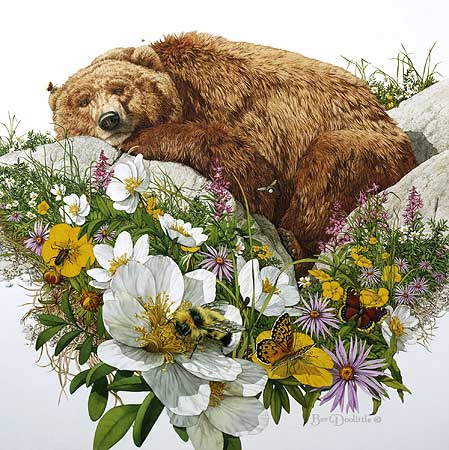 Bev Doolittle - BUGGED BEAR -  LIMITED EDITION PRINT Published by the Greenwich Workshop