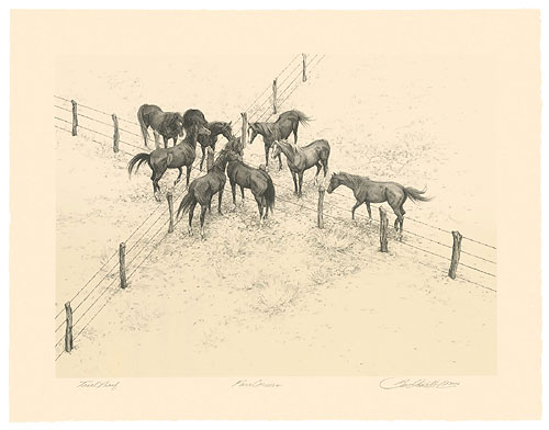 Bev Doolittle - Four Corners -  ORIGINAL LITHOGRAPH Published by the Greenwich Workshop