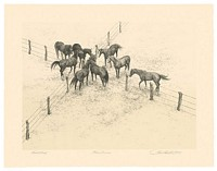 Four Corners&lt;br&gt; ORIGINAL LITHOGRAPH