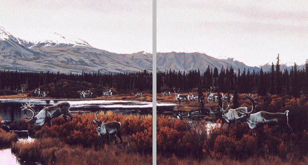 Rod Frederick - WAY OF THE CARIBOU -  LIMITED EDITION PRINT Published by the Greenwich Workshop