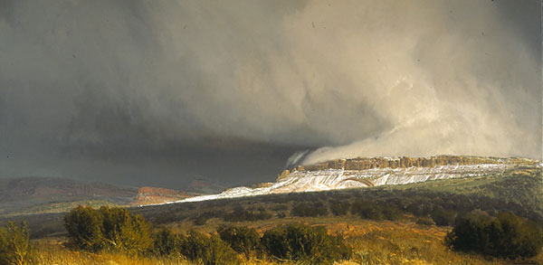 Wilson Hurley - SNOW SQUALLS CENTRAL UTAH -  LIMITED EDITION PRINT Published by the Greenwich Workshop