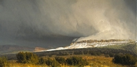 SNOW SQUALLS CENTRAL UTAH<br> LIMITED EDITION PRINT