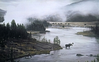 MOOSE RIVER<br> LIMITED EDITION PRINT