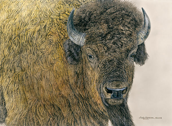 Judy Larson - Slow Bull -  LIMITED EDITION CANVAS Published by the Greenwich Workshop
