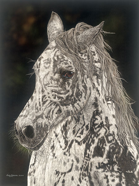 Judy Larson - American Horse -  LIMITED EDITION PRINT Published by the Greenwich Workshop