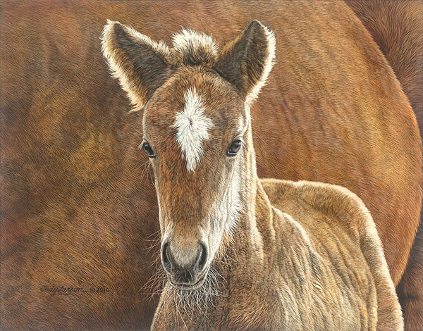 Judy Larson - Wild in the Country -  SMALLWORK CANVAS EDITION Published by the Greenwich Workshop