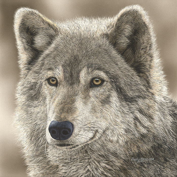 Judy Larson - The Play Wolf -  SMALLWORK CANVAS EDITION Published by the Greenwich Workshop