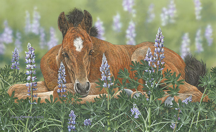 Judy Larson - Lounging in the Lupines -  LIMITED EDITION CANVAS Published by the Greenwich Workshop