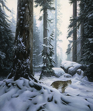 Stephen Lyman - SNOW HUNTER -  LIMITED EDITION PRINT Published by the Greenwich Workshop