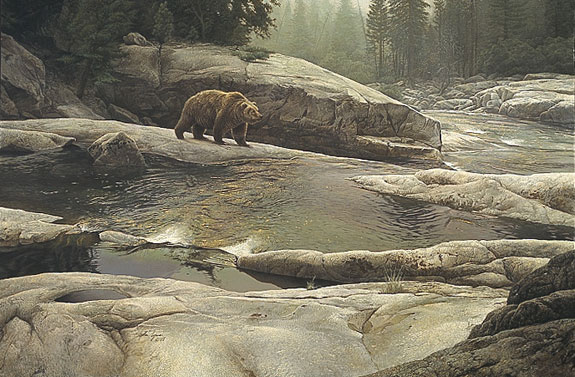 Stephen Lyman - UZUMATI - GREAT BEAR OF YOSEMITE -  LIMITED EDITION PRINT Published by the Greenwich Workshop