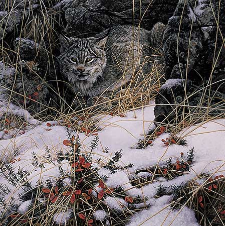 Stephen Lyman - SECRET WATCH (LYNX) -  LIMITED EDITION PRINT Published by the Greenwich Workshop