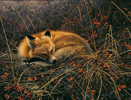 Stephen Lyman - Fox Dreams -  LIMITED EDITION CANVAS Published by the Greenwich Workshop