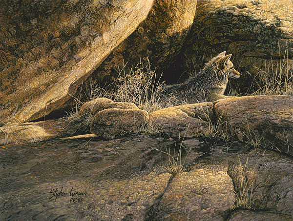 Stephen Lyman - Coyote Afternoon -  SMALLWORK CANVAS EDITION Published by the Greenwich Workshop