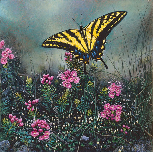 Swallowtail Butterfly and Pink Mountain Heather<br> SMALLWORK ANNIVERSARY EDITION