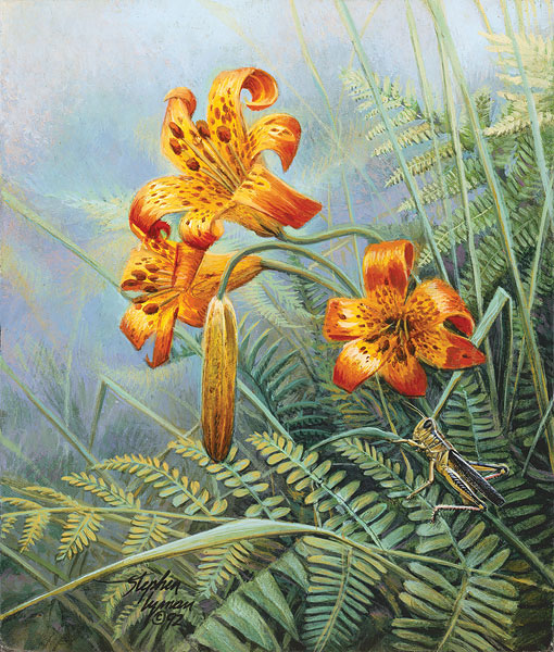 Stephen Lyman - Tiger Lilies and Grasshopper -  SMALLWORK ANNIVERSARY EDITION Published by the Greenwich Workshop
