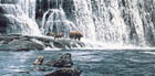 GRIZZLIES AT THE FALLS<br> LIMITED EDITION PRINT