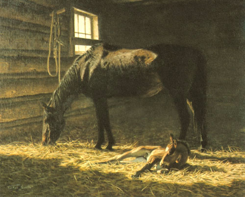 Tucker Smith - FOAL -  LIMITED EDITION PRINT Published by the Greenwich Workshop