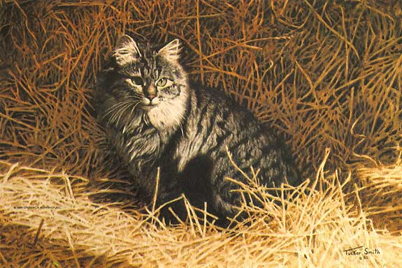 Tucker Smith - BARN CAT -  LIMITED EDITION PRINT Published by the Greenwich Workshop