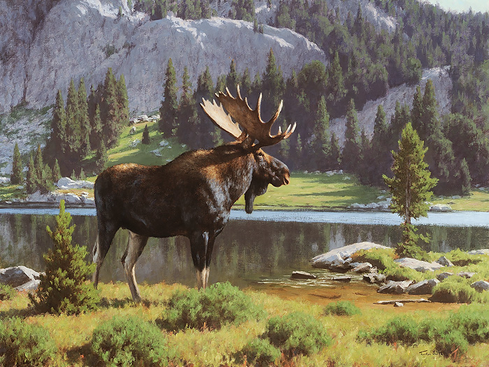 Tucker Smith - Moose at Dean Lake -  LIMITED EDITION CANVAS Published by the Greenwich Workshop