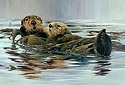 SEA OTTERS<br> LIMITED EDITION PRINT