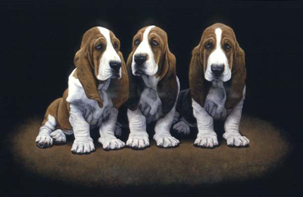 John Weiss - BASSET HOUND PUPS -  LIMITED EDITION PRINT Published by the Greenwich Workshop