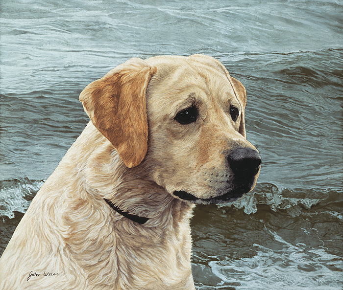 John Weiss - OF THE FINEST BREED:YELLOW LABRADOR -  LIMITED EDITION PRINT Published by the Greenwich Workshop