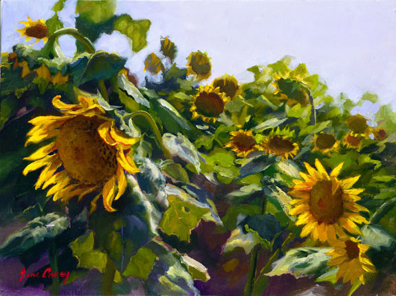 June Carey - Sunflowers Near Cortona -  LIMITED EDITION CANVAS Published by the Greenwich Workshop
